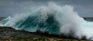 Cape Banks Crashing Wave